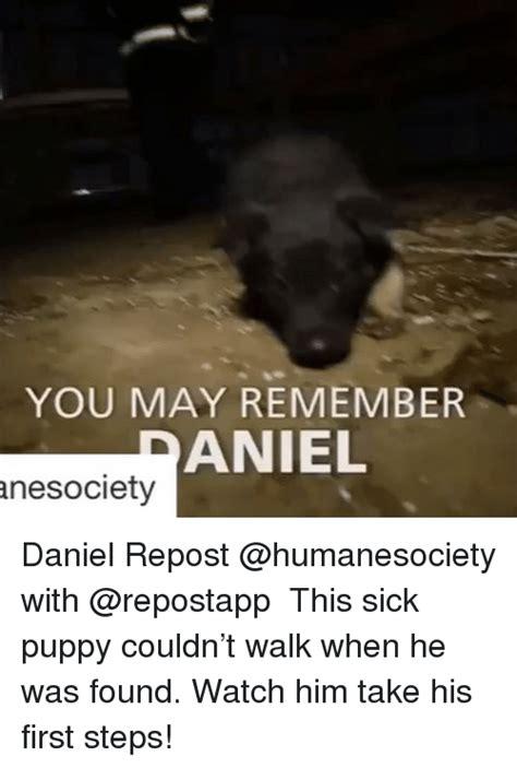 Sick Puppy Meme - 25 best memes about sick puppy sick puppy memes