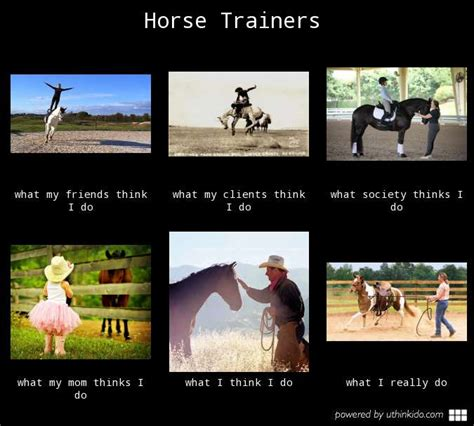 Trainer Meme - horse riding memes www imgkid com the image kid has it