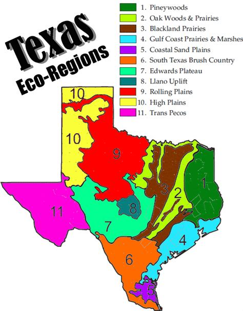 texas 4 regions map barber jason unit 4 part 2 gradual changes and texas ecoregions