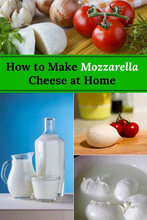 how to make mozzarella cheese at home home and gardening