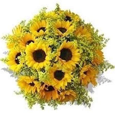 fiore da regalare ad una ragazza fiori diploma regalare fiori