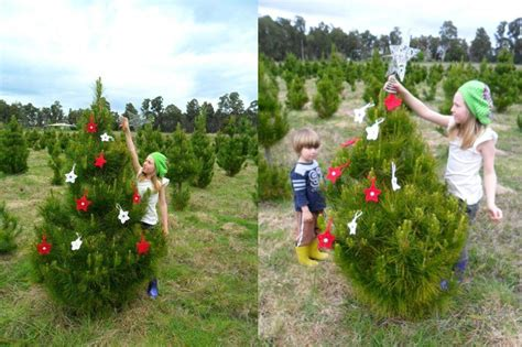 feature home living on a christmas tree farm be a fun mum