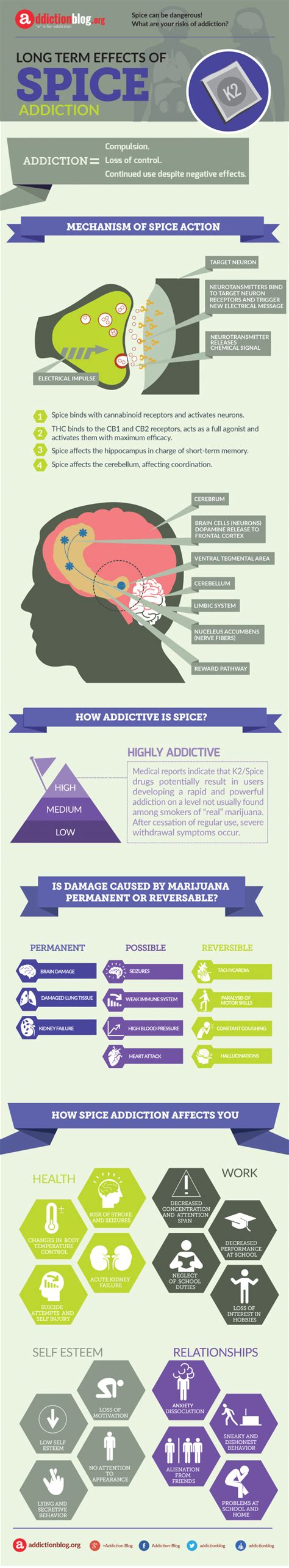 Term Detox Route term consequences of spice addiction infographic