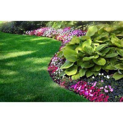 flower design miami miami landscape front yard shade garden gardening