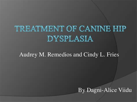 treatment of canine hip dysplasia