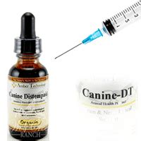 distemper vaccine dogs canine distemper read this before putting your to sleep