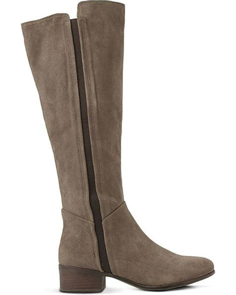 steve madden knee high boots steve madden suede knee high boots in brown taupe suede