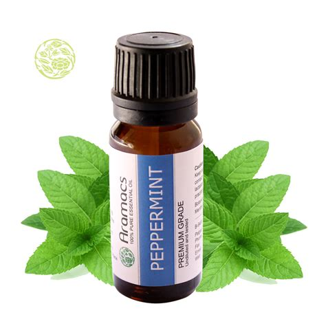 20ml Cornt Mint Essential And Nusaroma buy peppermint mentha piperita