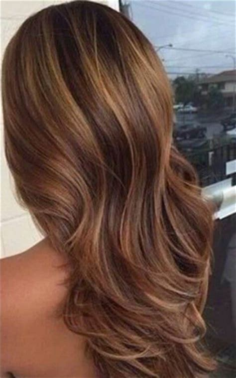 Lowlights For Light Brown Hair by Lowlights Sixteen 236 Wsource