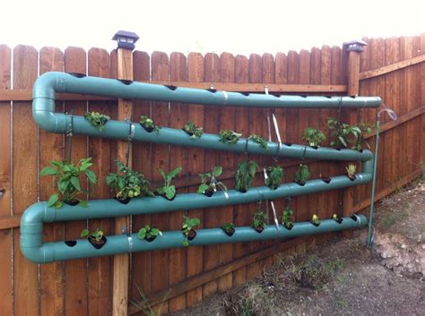backyard growing system 125 best images about aquaponics on gardens