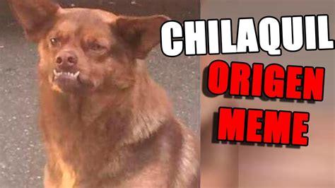 Memes Perro Chilaquil origen de perro chilaquil y mejores memes