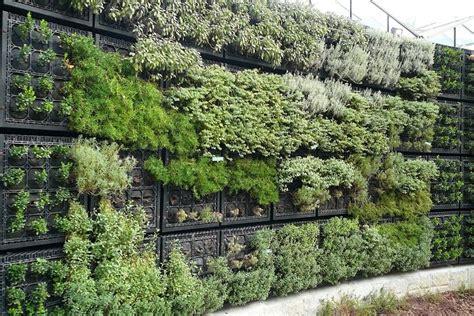 10 Awesome Exterior Design Ideas Archiweb 3 0 Herb Garden Wall
