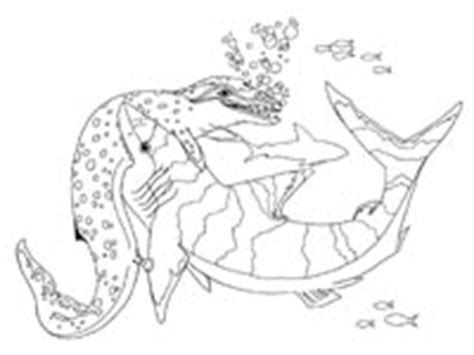 megalodon shark coloring page pin megalodon coloring pages on pinterest