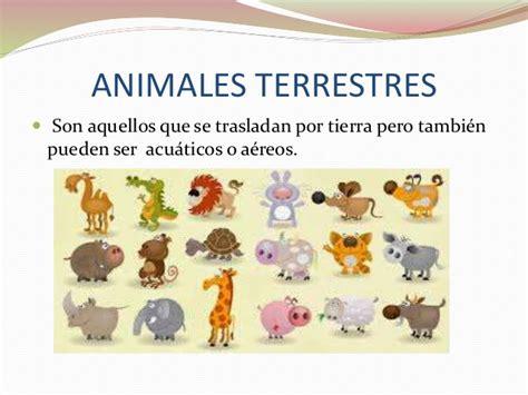 100 ejemplos de animales terrestres y acuticos clasificaci 211 n de animales acu 193 ticos a 201 reos terrestres y