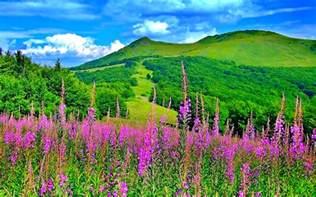Spring Landscape Pics Photos Spring Landscape Wallpaper Spring Landscape Desktop