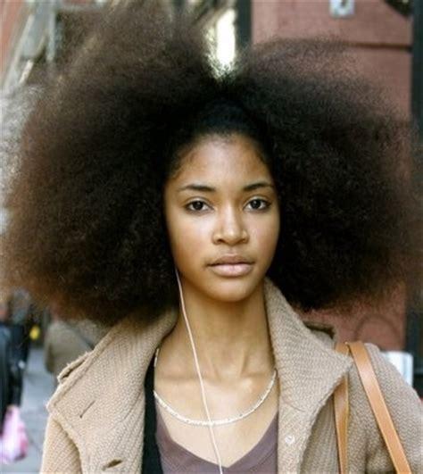 black wiry hair african afro black beauty black ethnicity hair jordan