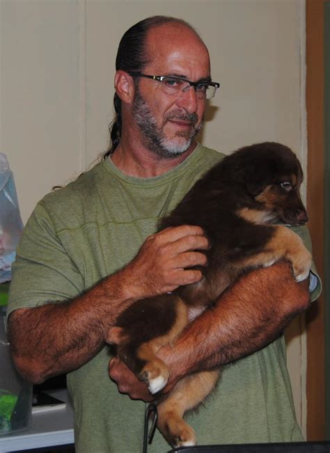 what time does the light rail start running shamrock rose aussies update we have puppies born 5