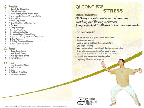 Pdf Healing Power Breath Techniques Concentration by Qi Gong For Stress