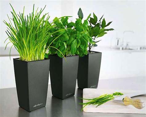 pot bunga minimalis google search pots indoor flower