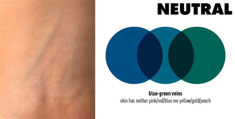 neutral blue finding your undertone beauty and bariatrics