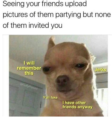 Memes De Chihuahua - m 225 s de 25 ideas incre 237 bles sobre chihuahua meme en