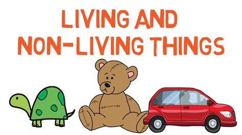 living things non living things living and nonliving things for kids difference between
