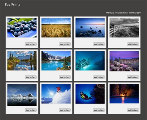 gallery themes for wordpress free 5 steps to small business photography wordpress success