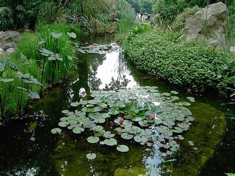 giardino la mortella giardini la mortella homeimg it