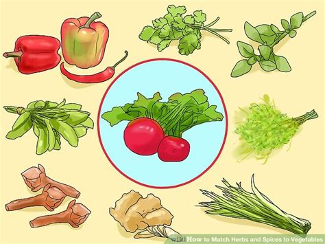 3 vegetables in how to match herbs and spices to vegetables with pictures