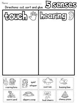 senses sort  rock paper scissors teachers pay teachers