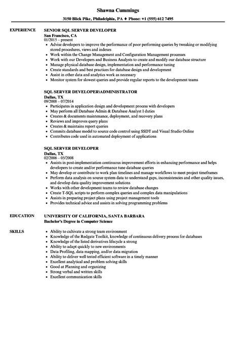 sql server developer resume sles velvet