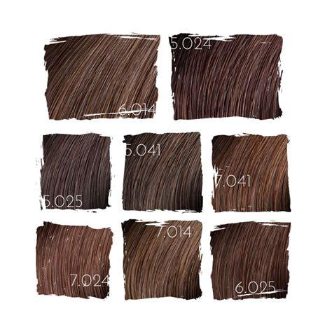 loreal hair color shades l or 233 al majirel browns hair colour dreams