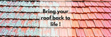 tile roof restoration bendigo roof restoration and roof replacement in ballarat