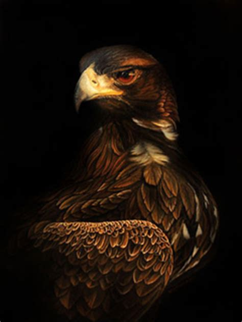 eagle mobile phone wallpapers  hd wallpaper phone