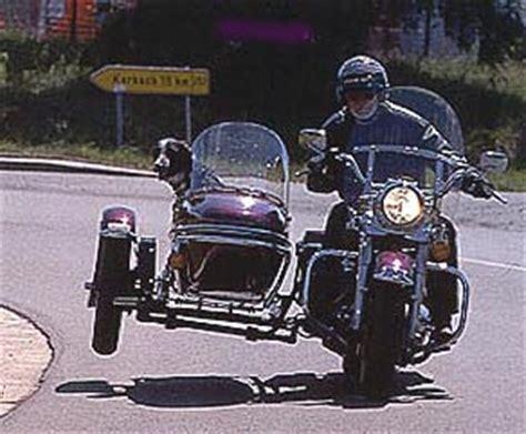 Motorrad Gespann F R Hunde by Motorrad Modellkunde