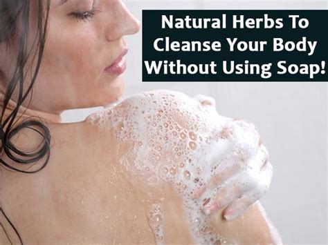 What To Use To Detox Through Your by Herbs To Cleanse Your Without Using Soap