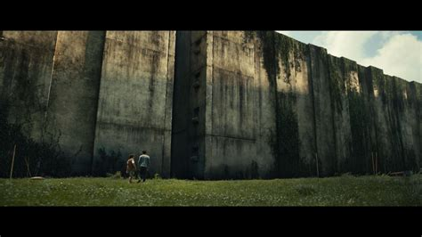 ด หน งthe maze runner the maze runner movie images featuring dylan o brien