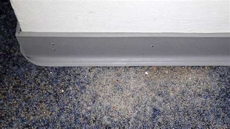 Ameisen Im Schlafzimmer by Ameisen Im Wohnzimmer Ocaccept