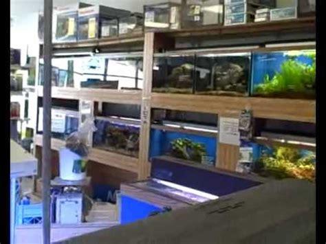 aquarium design store pondscape us clients ocean design aquarium store