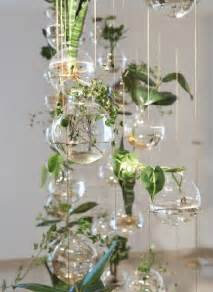easy apartment plants 25 best ideas about hanging terrarium on pinterest
