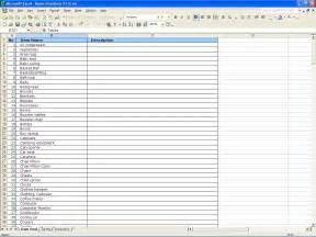insurance inventory list template best template idea