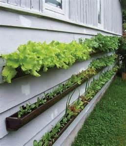 Small Veggie Garden Ideas Gutter Gardens Grow Produce Without Taking Up Space Design Bookmark 11769