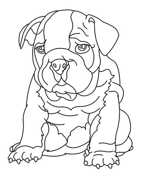 coloring pages of bulldog puppies bulldog coloring pages