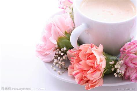 b07jwjn374 noces de neige e lit 哈瓦那咖啡 harwana coffee 最新活動
