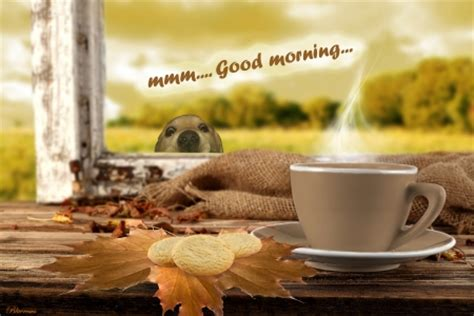 wallpaper 3d good morning mmm good morning 3d and cg abstract background