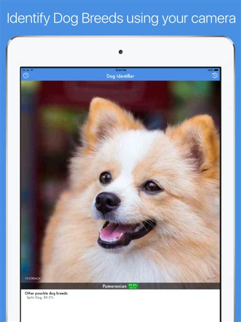 breed identifier app id breed identifier on the app store