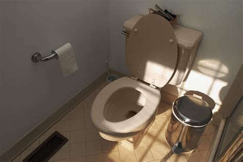 smell of d in bathroom how to fix a toilet making a foghorn sound home guides