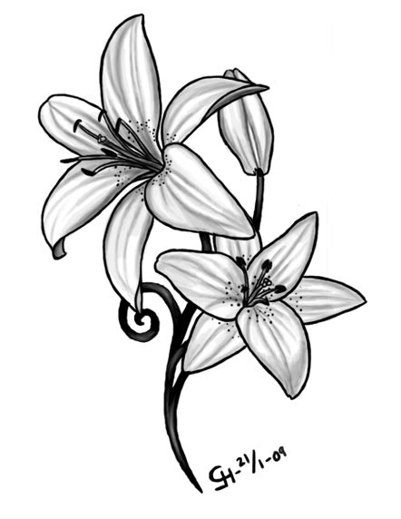 simple lily tattoo designs by black petal on deviantart