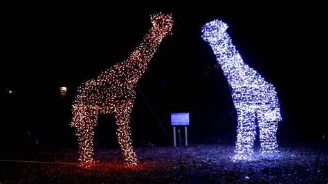 Henry Vilas Zoo Lights