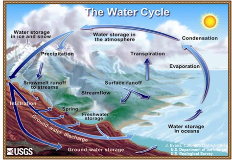 water cycle diagram transfer of energy and the hydrologic cycle